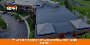 What Are The Signs That A Commercial Roof Needs Repair?